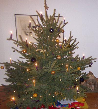 Weihnachtsbaum Ab Wann.Weihnachtsbaum Wir Gestalten Die Zukunft Junge Verlagsmenschen
